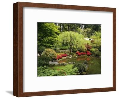 Japanese Garden Pond-Craig Tuttle-Framed Photographic Print