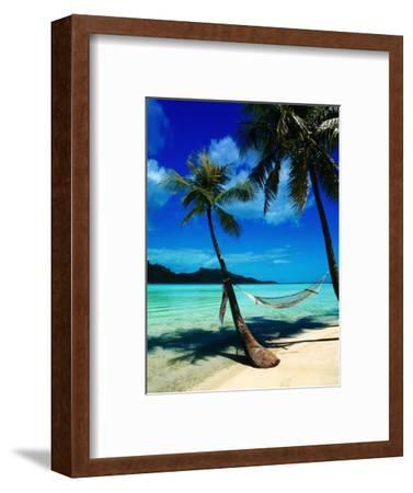 Hammock Hanging Seaside-Randy Faris-Framed Photographic Print