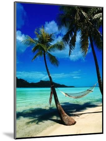 Hammock Hanging Seaside-Randy Faris-Mounted Photographic Print
