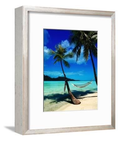 Hammock Hanging Seaside-Randy Faris-Framed Photographic Print