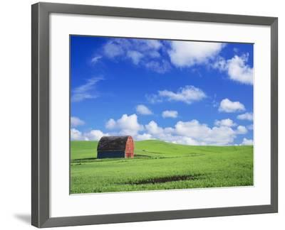 Old Barn Amidst Pea Field-Terry Eggers-Framed Photographic Print