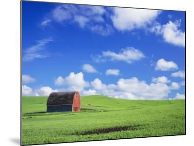 Old Barn Amidst Pea Field-Terry Eggers-Mounted Photographic Print