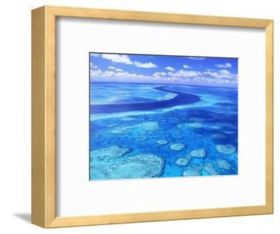 Australia's Great Barrier Reef-Theo Allofs-Framed Photographic Print