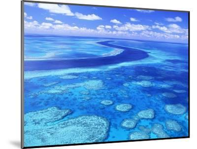 Australia's Great Barrier Reef-Theo Allofs-Mounted Photographic Print