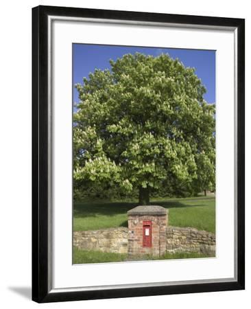 GR Royal Mail Rural Letter Box-Richard Klune-Framed Photographic Print