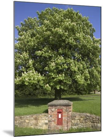 GR Royal Mail Rural Letter Box-Richard Klune-Mounted Photographic Print