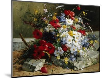 Daisies, Cornflowers and Poppies-Eugene Henri Cauchois-Mounted Photographic Print