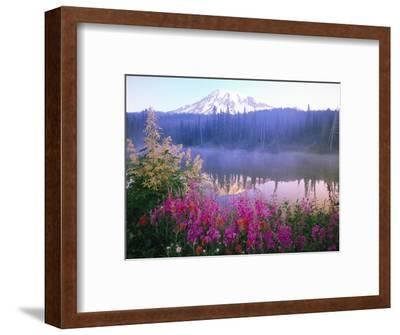 Wildflowers in Bloom by Lake on Mount Rainier-Craig Tuttle-Framed Photographic Print