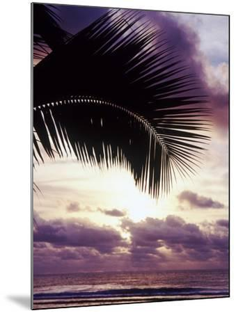Sunset in Rarotonga-Craig Tuttle-Mounted Photographic Print