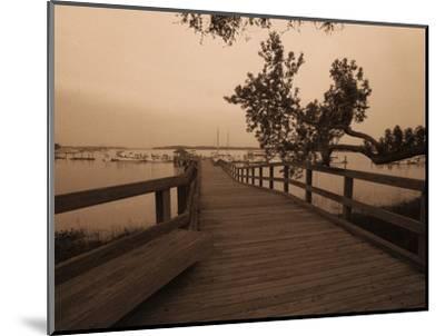Bridge Leading to Pier-Guy Cali-Mounted Photographic Print