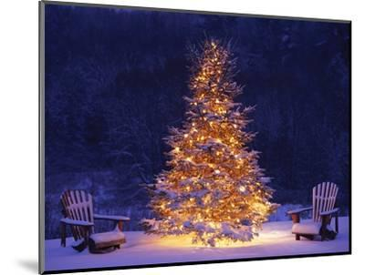 Snow Covering Adirondack Chairs by Lit Christmas Tree-Jim Craigmyle-Mounted Photographic Print