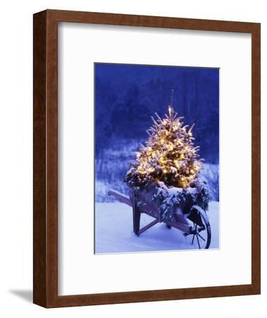 Lighted Christmas Tree in Wheelbarrow-Jim Craigmyle-Framed Photographic Print