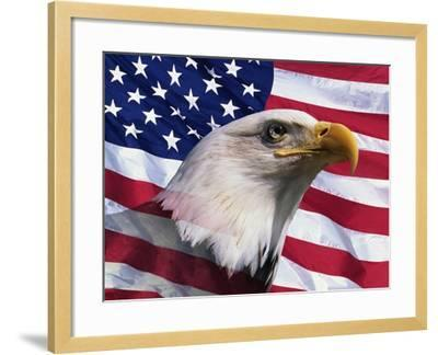 Bald Eagle and American Flag-Joseph Sohm-Framed Photographic Print