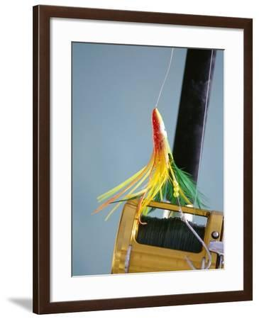 Fishing Hook and Line-David Papazian-Framed Photographic Print