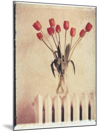 Vase of Tulips on a Radiator-Natalie Fobes-Mounted Photographic Print