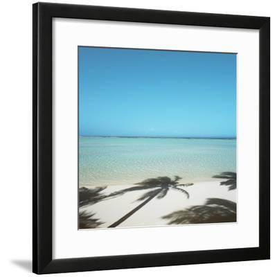 Shadows of Palm Trees on Beach--Framed Photographic Print