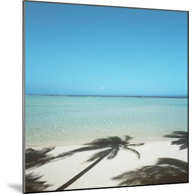 Shadows of Palm Trees on Beach--Mounted Photographic Print