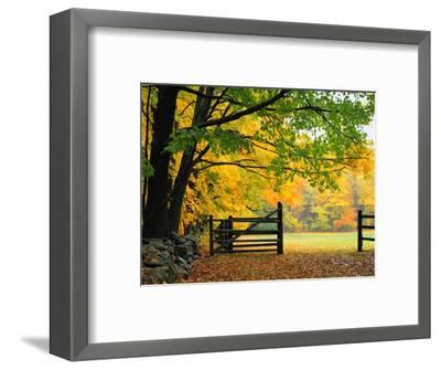 Fall Foliage Surrounds an Open Gate-Kathleen Brown-Framed Photographic Print