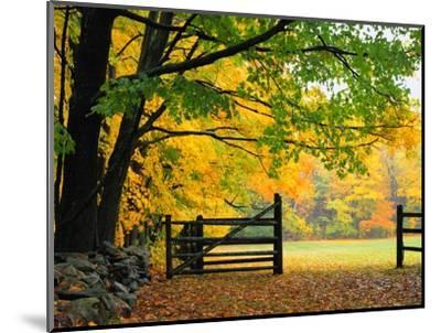 Fall Foliage Surrounds an Open Gate-Kathleen Brown-Mounted Photographic Print