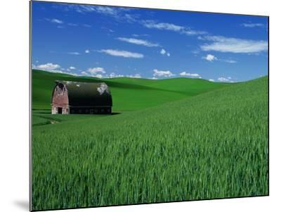 Red Barn in a Wheat Field-Darrell Gulin-Mounted Photographic Print