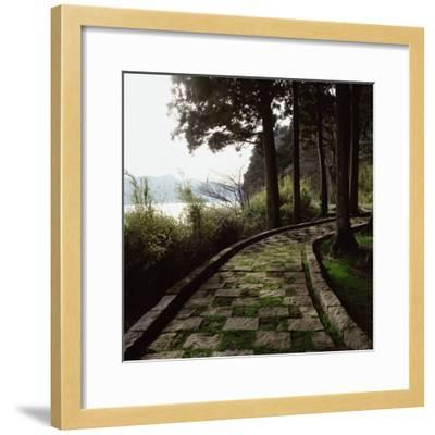 A Stone Footpath--Framed Photographic Print