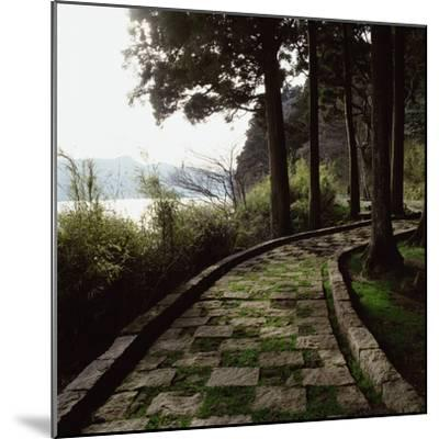 A Stone Footpath--Mounted Photographic Print