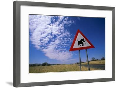 Warthog Crossing Sign-Paul Souders-Framed Photographic Print