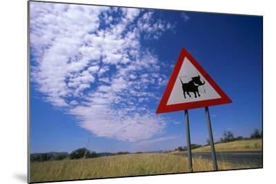 Warthog Crossing Sign-Paul Souders-Mounted Photographic Print