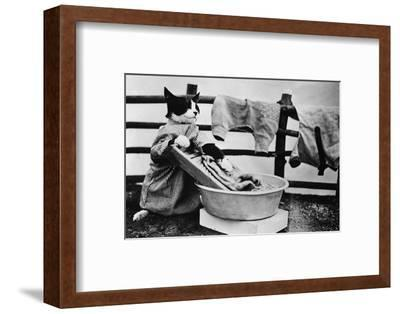 Dressed Up Cat Washing Clothes in Wash Tub--Framed Photographic Print