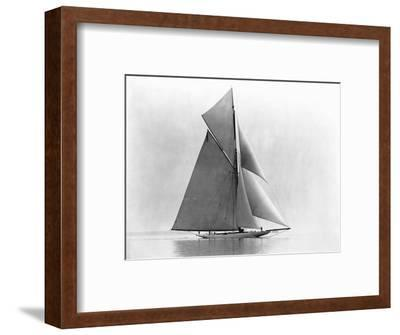 Yacht Reliance at Full Sail--Framed Photographic Print