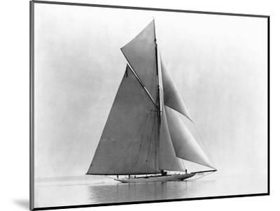 Yacht Reliance at Full Sail--Mounted Photographic Print