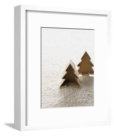 Christmas Decoration--Framed Photographic Print