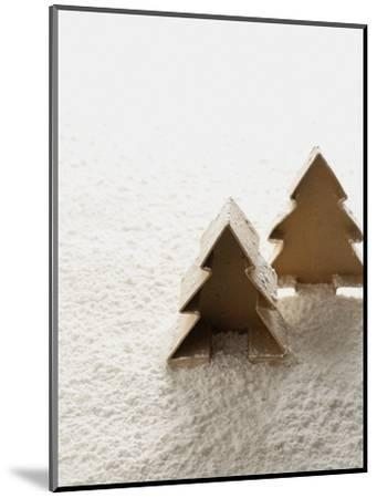 Christmas Decoration--Mounted Photographic Print