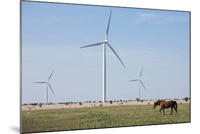 Wind Farm, Vega, Texas-Paul Souders-Mounted Photographic Print