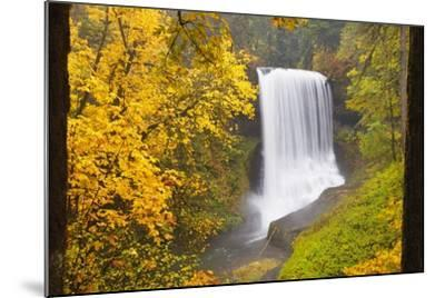 Fall Colors Add Beauty to North Middle Falls, Silver Falls State Park, Oregon, Pacific Northwest-Craig Tuttle-Mounted Photographic Print