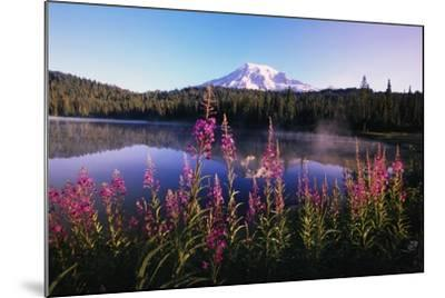 Mount Rainier Reflecting in Lake-Craig Tuttle-Mounted Photographic Print