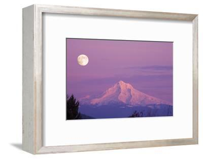 Mount Hood and Full Moon-Craig Tuttle-Framed Photographic Print