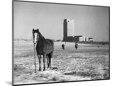 State Capitol-John Vachon-Mounted Photographic Print
