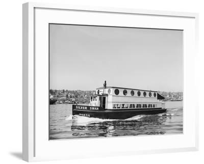 The Silver Swan on Lake Union-Ray Krantz-Framed Photographic Print