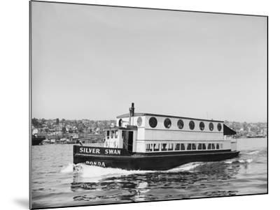 The Silver Swan on Lake Union-Ray Krantz-Mounted Photographic Print