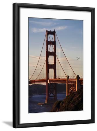 San_Francisco_D260-Craig Lovell-Framed Photographic Print