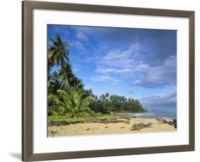 Beach in Limon, Costa Rica-Guido Cozzi-Framed Photographic Print