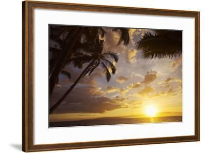 Sunset with Palm Trees in Kihei, Maui, Hawaii-Ron Dahlquist-Framed Photographic Print