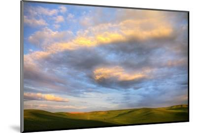 Rolling Hills of Green Spring Wheat and Evening Bright Clouds-Terry Eggers-Mounted Photographic Print
