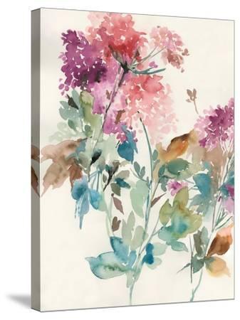 Sweet Hydrangea II-Asia Jensen-Stretched Canvas Print
