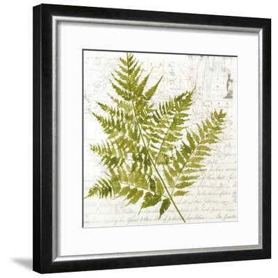 Fern I-Asia Jensen-Framed Art Print