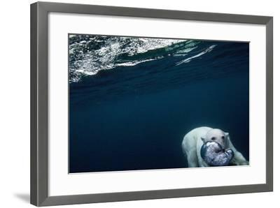 Underwater Polar Bear near Frozen Strait, Nunavut, Canada-Paul Souders-Framed Photographic Print