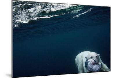 Underwater Polar Bear near Frozen Strait, Nunavut, Canada-Paul Souders-Mounted Photographic Print