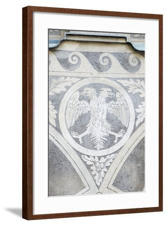 Double Headed Eagle-Rob Tilley-Framed Photographic Print