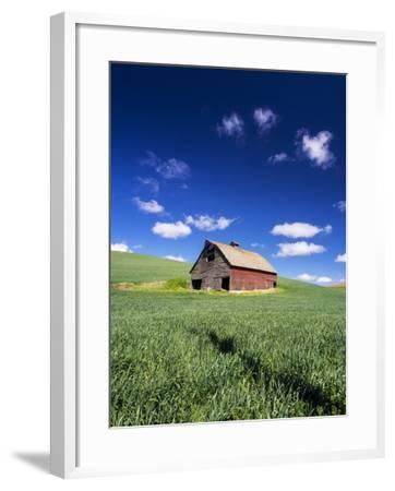 Old Red Barn in a Field of Spring Wheat-Terry Eggers-Framed Photographic Print